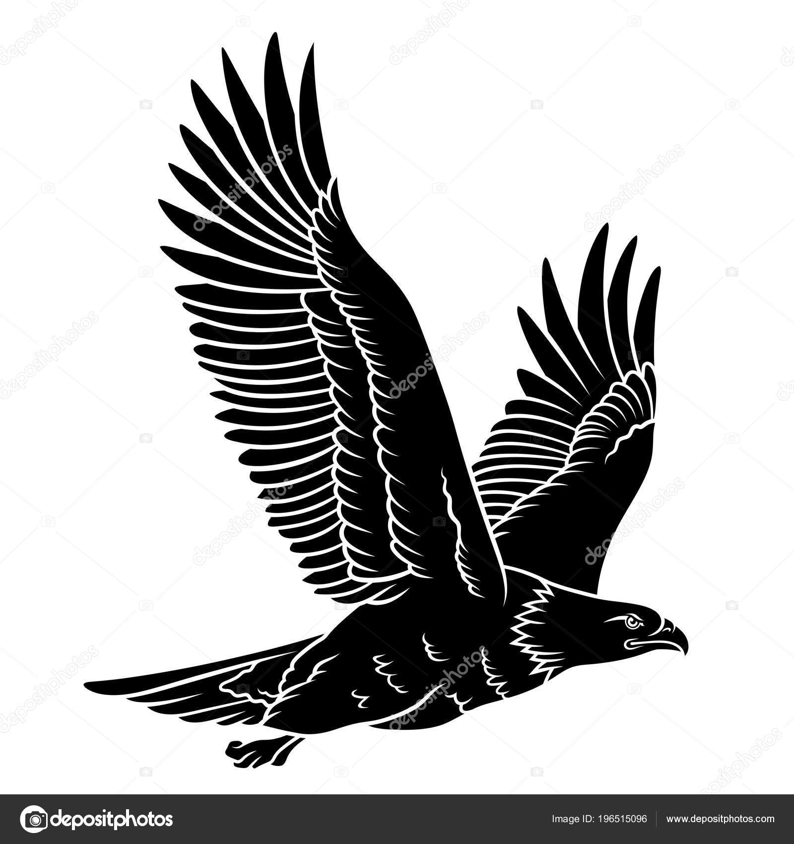 Bald Eagle Silhouet Geïsoleerd Wit Deze Vectorillustratie Kan Worden