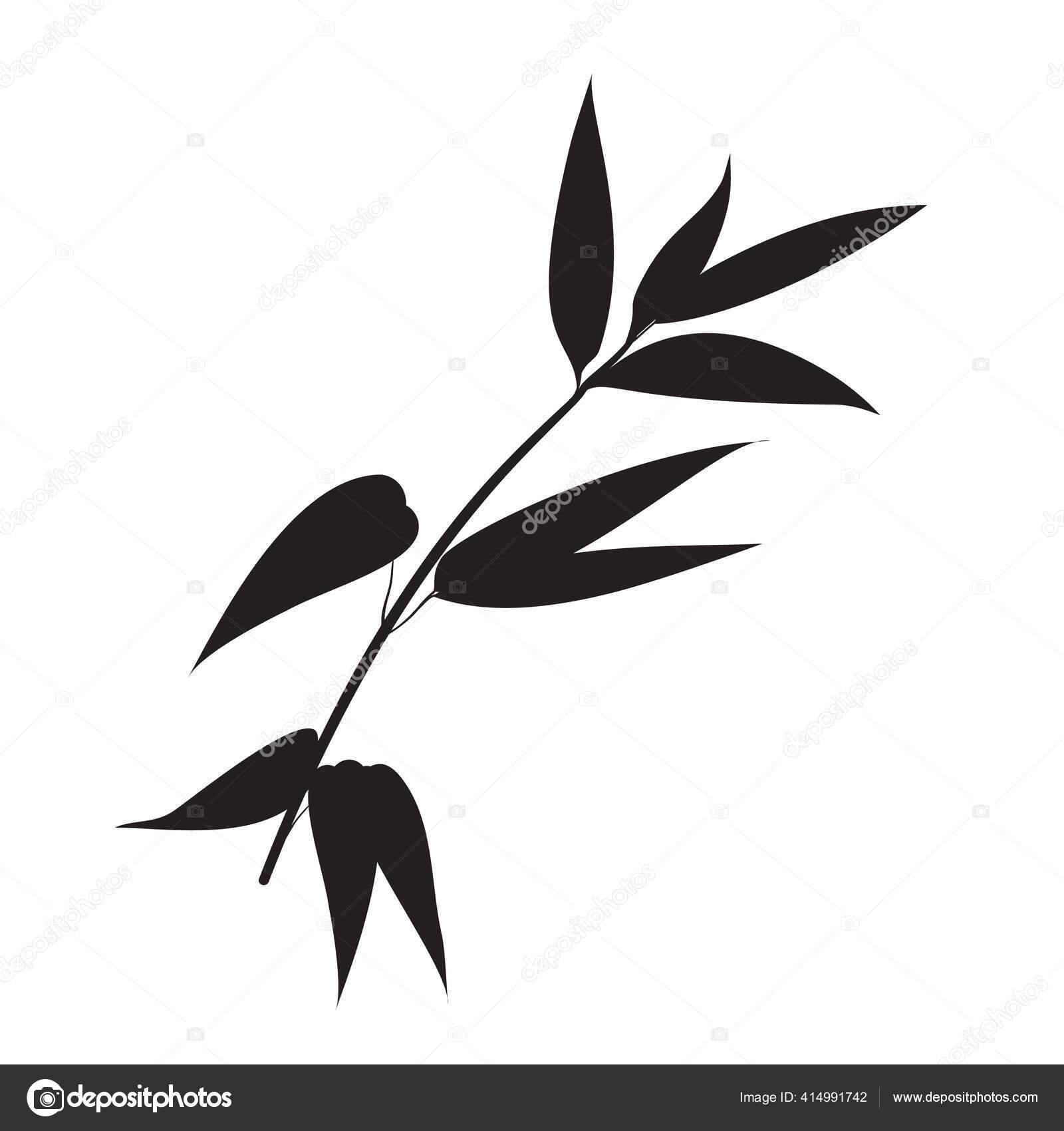 tangan digambar cabang bambu untuk desain anda stok vektor c kotkoa 414991742 depositphotos