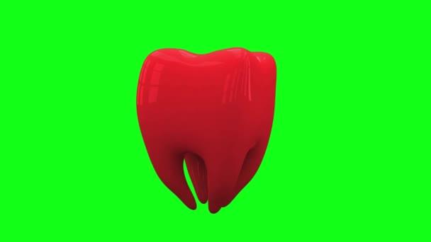 rote Zahnschleife dreht sich auf grünem Bildschirm