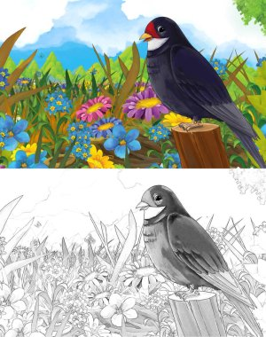 cartoon fairy tale scene with different animals on the meadow smiling cuckoo bird - with coloring page - illistration for children