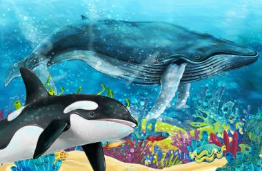 cartoon scene with whale and killer whale near coral reef - illustration for children
