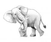 Kreslená scéna s velkým sloní na bílém pozadí Safari barva stránky náčpač ilustrace pro děti