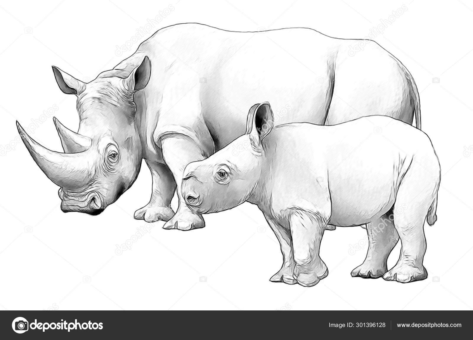 Escena De Dibujos Animados Con Rinoceronte Safari Animal