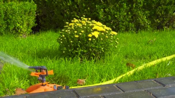 Zavlažovač hlavy automatické zavlažování keře, trávy a trávníku. Postřikování vody na zelenou trávu. Zavlažovací systém