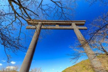 The Oyunohara large torii