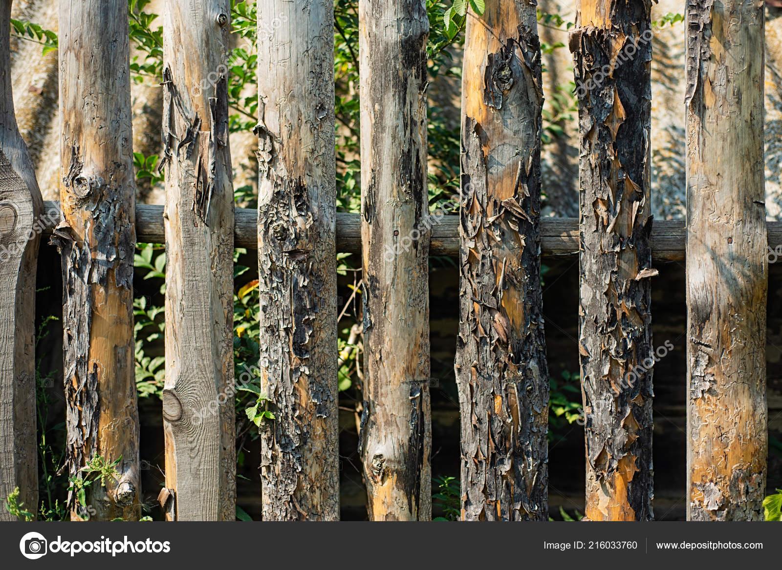 Alte Verdorbene Umzaunung Garten Die Textur Der