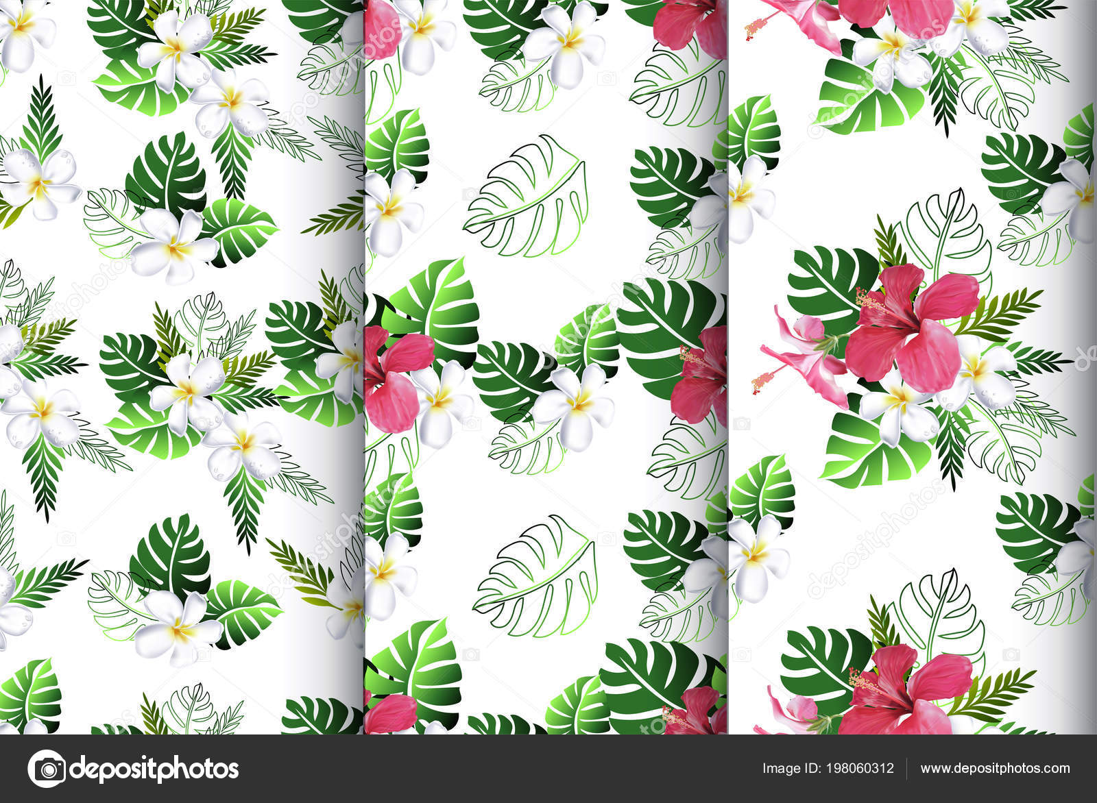 Seamless Pattern Plumeria Hibiscus Flower White Background Stock