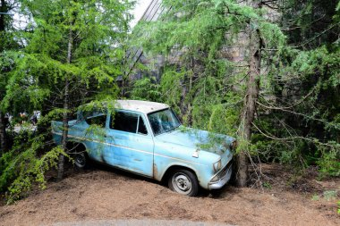 Weasley Car in the forest. The Wizarding World of Harry Potter i