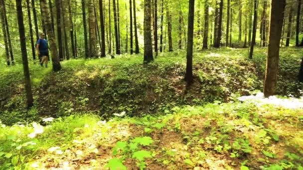 Egy ember, egy hátizsákban séták az erdőben. Az előtérben van egy szakadékba.