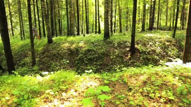 Mladá žena chodí v lese. V popředí je rokle.