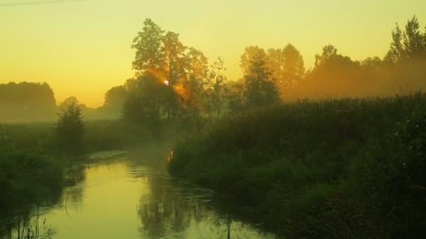 Sunrise on the river with a rapid current covered with fog.