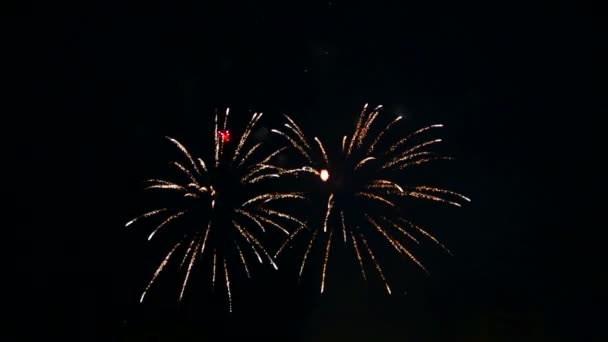 multicolored fiery flashes of festive fireworks in the night sky