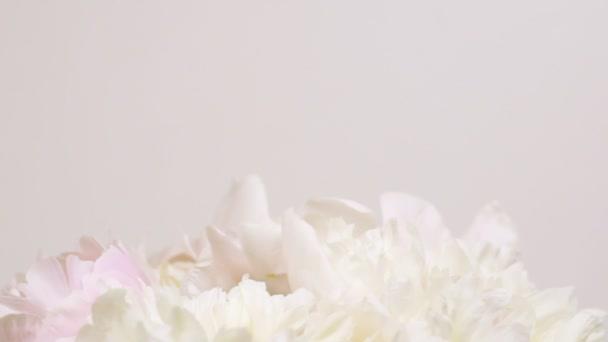 Vrcholky bílých pekonů. Krásné přirozené květinové pozadí