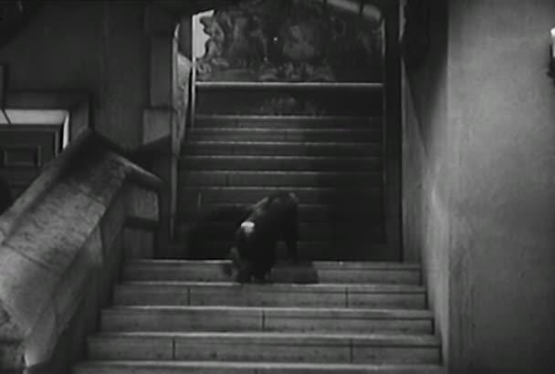 Nízký úhel pohled opice šplhá nahoru schodiště zámku, roku 1950