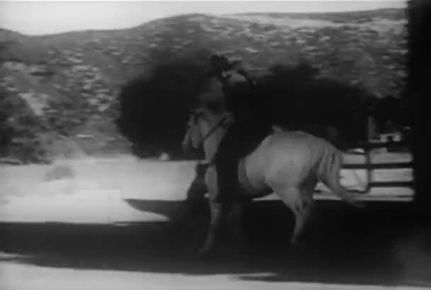 Pes běží vedle kovboj cval na koni, v roce 1930