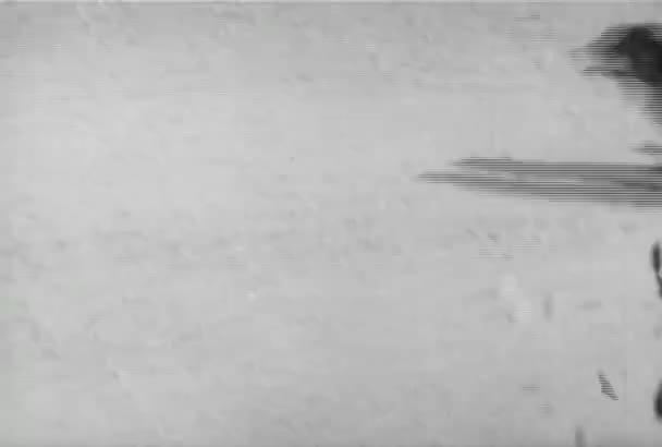 Pes běží vedle projížďky kočárem, roce 1930