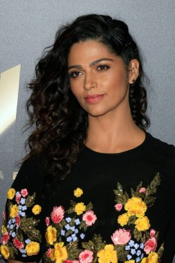Camila Alves at arrivals for The 20th Annual Hollywood Film Awards, The Beverly Hilton Hotel, Beverly Hills, CA November 6, 2016. Photo By: Priscilla Grant/Everett Collection