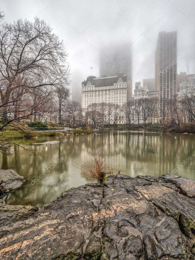 Central Park, at the lake in spring a foggy, misty day