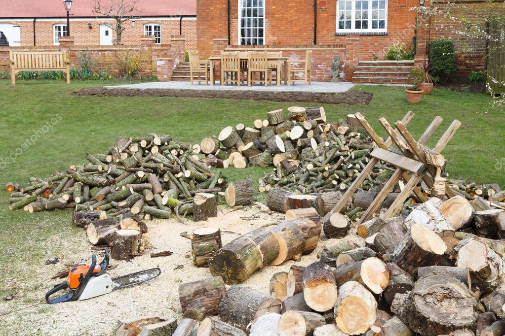 Chainsaw and saw horse with freshly cut pile of firewood in an English garden setting