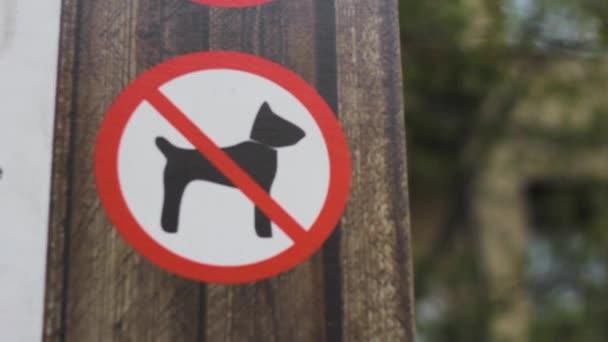 žádný pes podepsat Park varování dřevěné