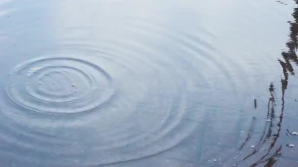 Vodní kapky déšť šplouchání osob