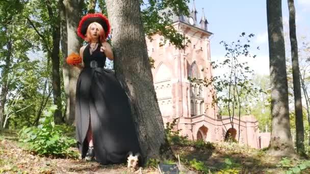 varázslónő Halloween varázsol boszorkány Varázspálca fantasy varázsló rejtély