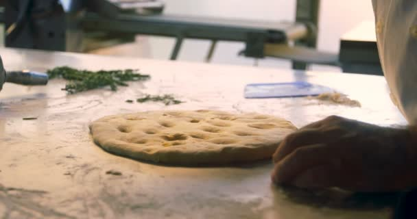 Close-up of male chef preparing pizza in commercial kitchen 4k