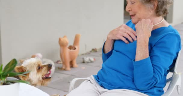 Senior woman playing with her dogs at home 4k