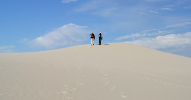 Rear view of couple with backpacks walking in the desert on a sunny day 4k