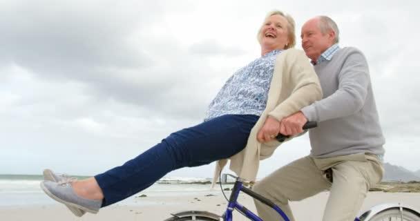 Elderly Couple Happy Stock Videos Royalty Free Elderly Couple