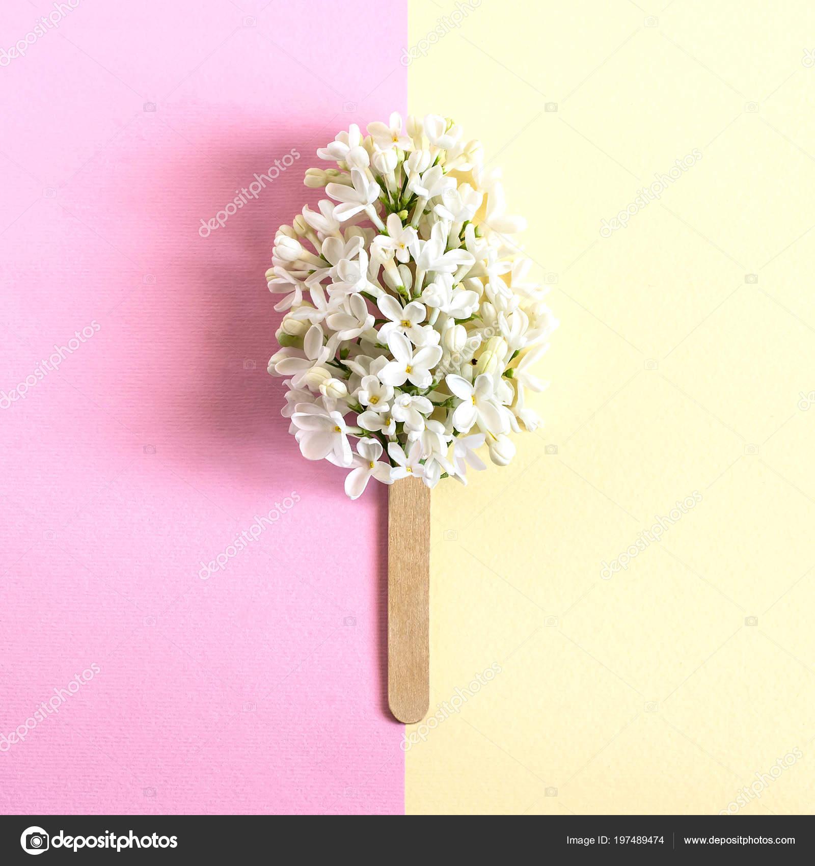 03390d0447 Λουλούδια από λευκό λιλά σε stick σαν popsicle. Μινιμαλισμός. Δημιουργική ιδέα  καλοκαιρινή τροφή. Δύο χρώμα παστέλ φόντο.