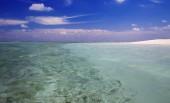 Isole tropicali e atolli. Pure acque turchesi delloceano. Bianche lagune coralline di sabbia e blue. Declini e dawn colorato.