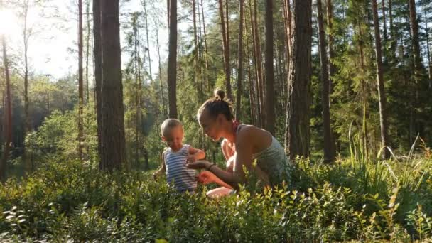 Mother and son at age of one year collect and eat wild blueberries in summer forest