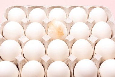 Chicken eggs in egg carton on pink background. Minimal composition. Flat lay, top view. Copy space for your text. stock vector