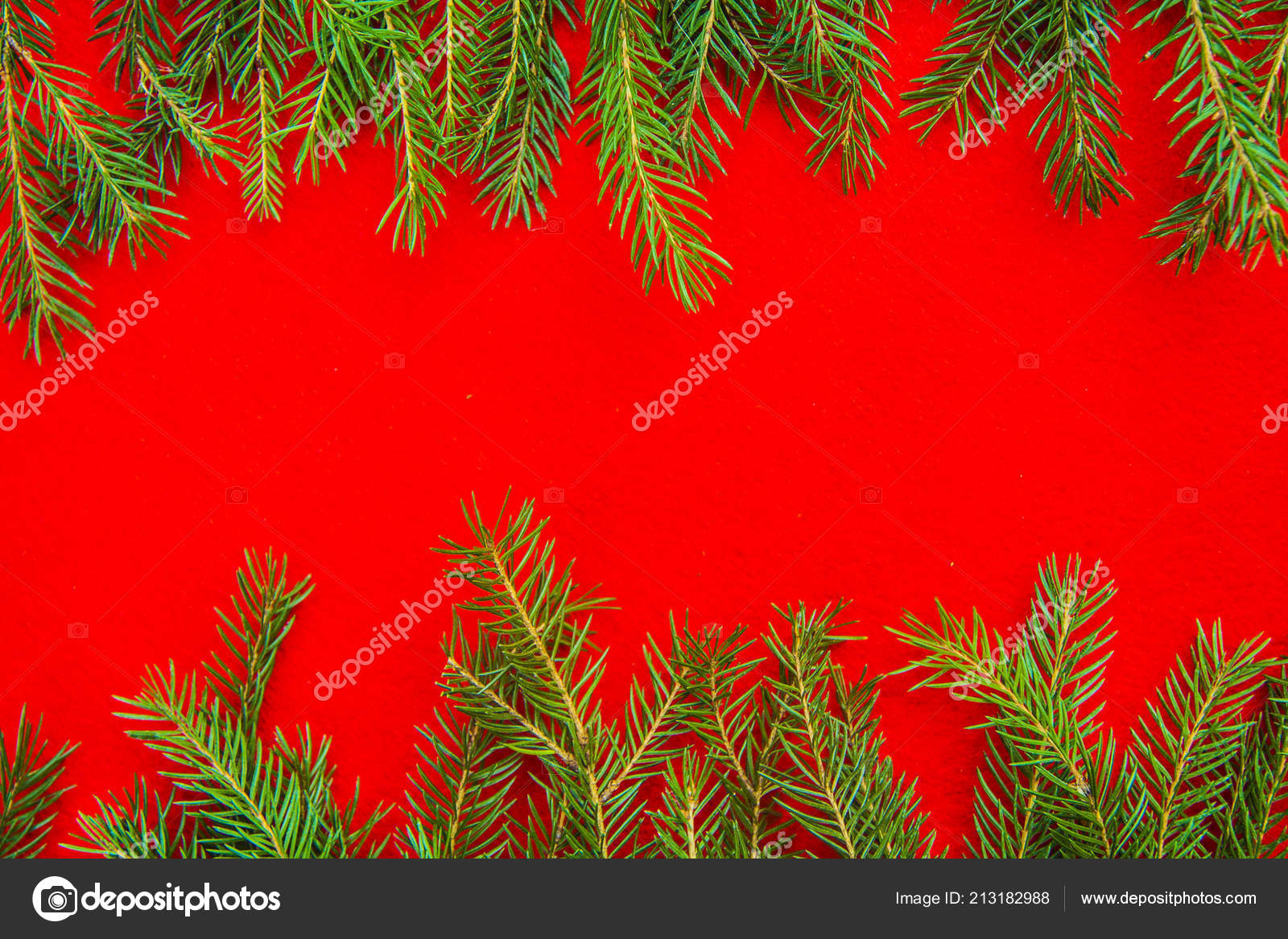 Bright christmas background frame with a copy space with fir
