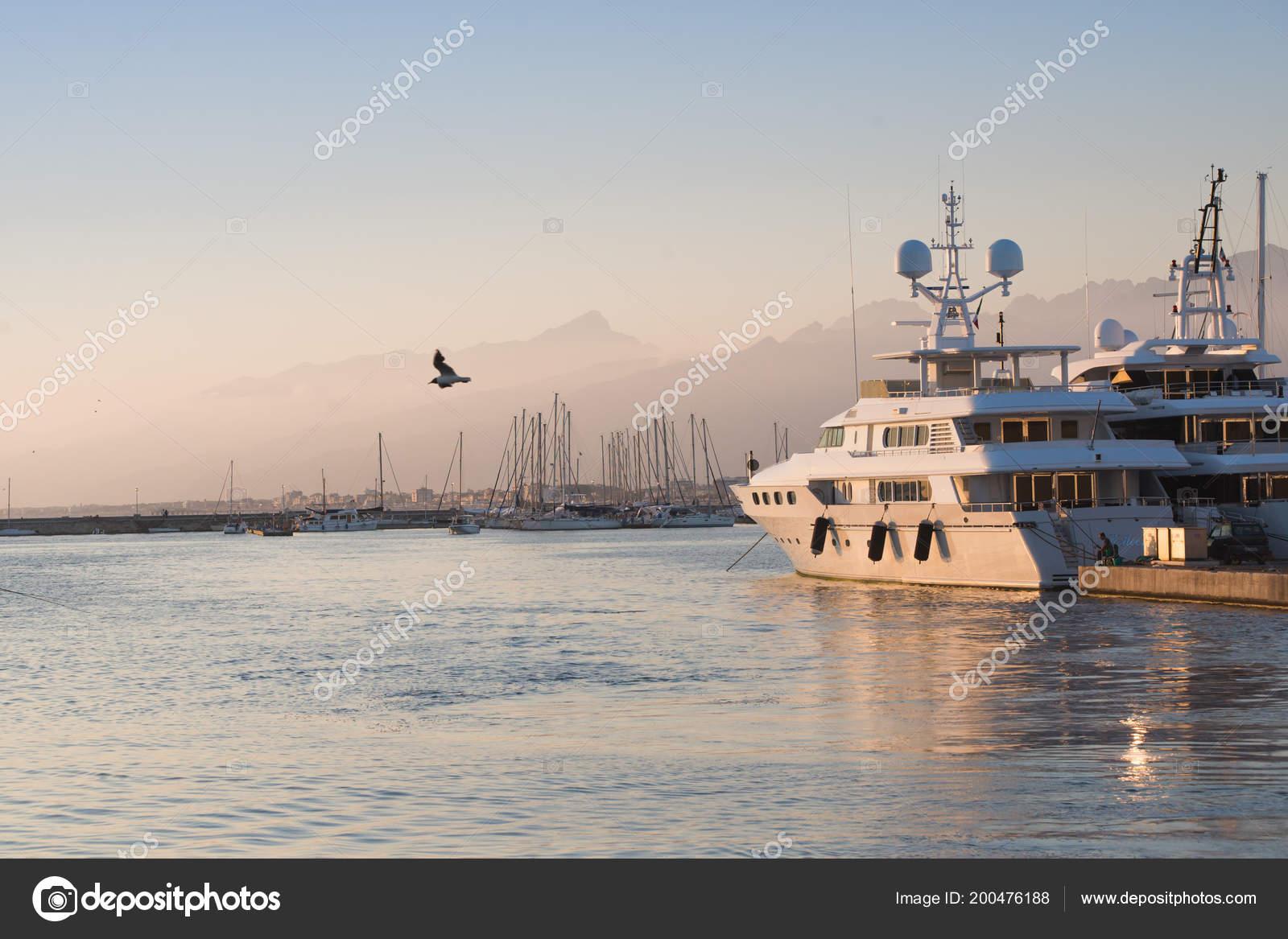 Citaten Zee : De meeuw vliegen over zee in de haven u stockfoto tarafoto