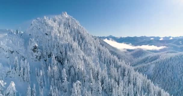 Mountain Peaks Aerial Panoramic Helicopter View Beautiful Snow Covered Trees Clouds Woods Cascades Range
