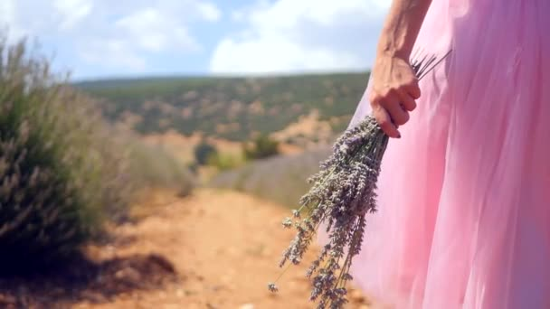 Womans hand holding lavender flowers