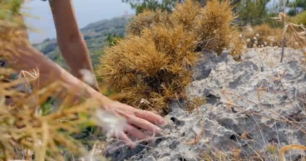 Feet of men wearing trekking shoes climbing rocks