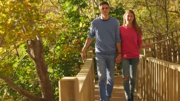 Boardwalk through an autunm forest in sunshine weather