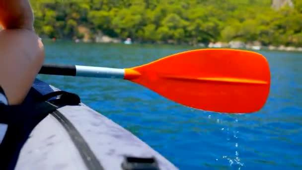 Kayak point of view, closeup of paddle