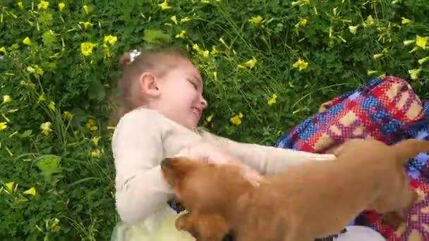 Hübsches Mädchen spielt auf grünem Gras mit einem Welpen