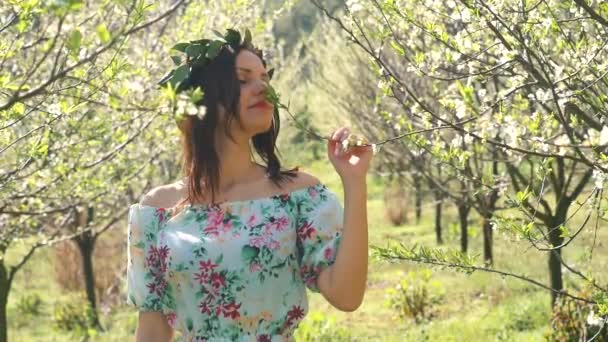 Young beautiful woman smells blossom trees.