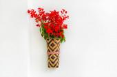 Bambusová květinová váza s červenými šeříkovými květy visícími na bílé stěně. Izolované pozadí.