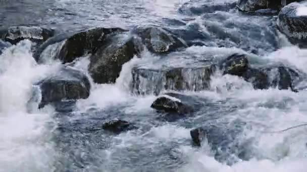 River close-up with stones