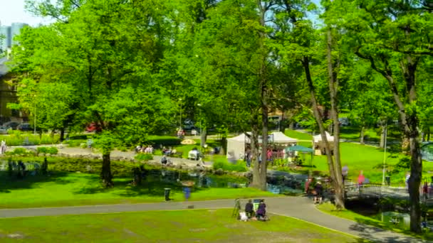 People walking in the park and enjoying day summer festival timelapse,