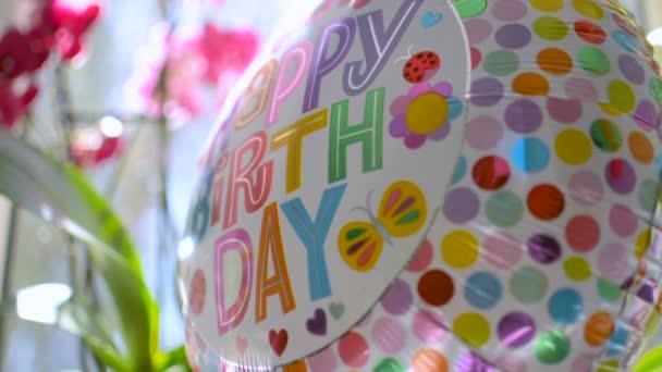 Dárky oslava narozenin představuje květiny a kec, odrážející sluneční světlo