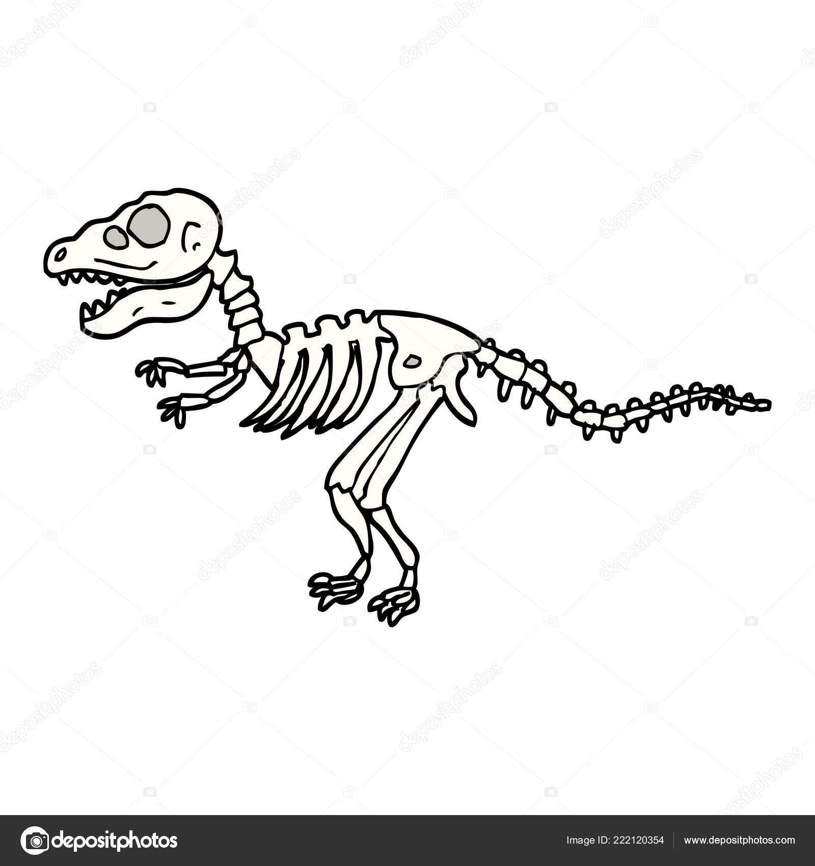 Mao Desenhada Doodle Estilo Dos Desenhos Animados Ossos Dinossauro