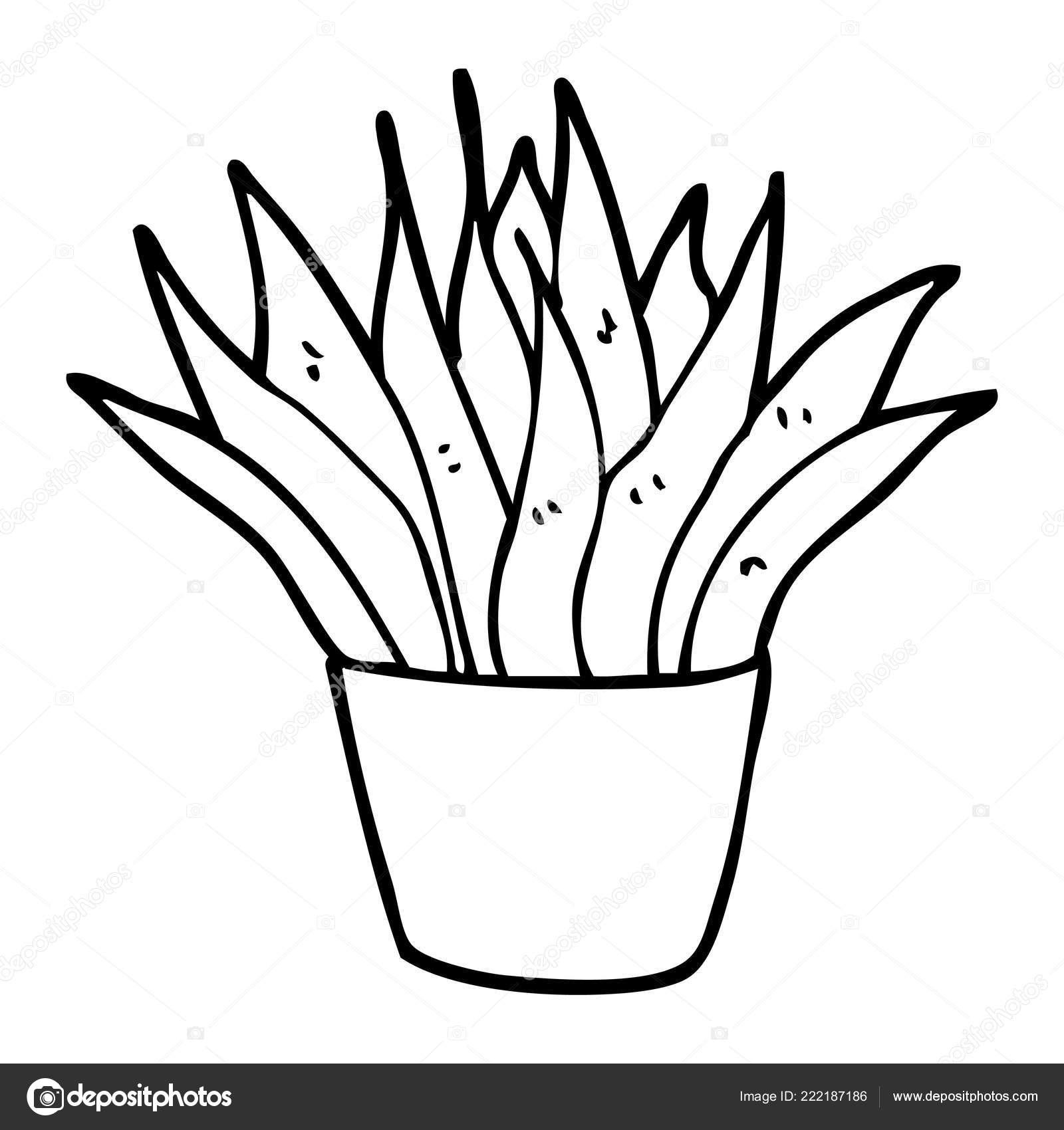 line drawing cartoon house plant stock vector lineartestpilot Black and White Cartoon Store line drawing cartoon house plant stock vector