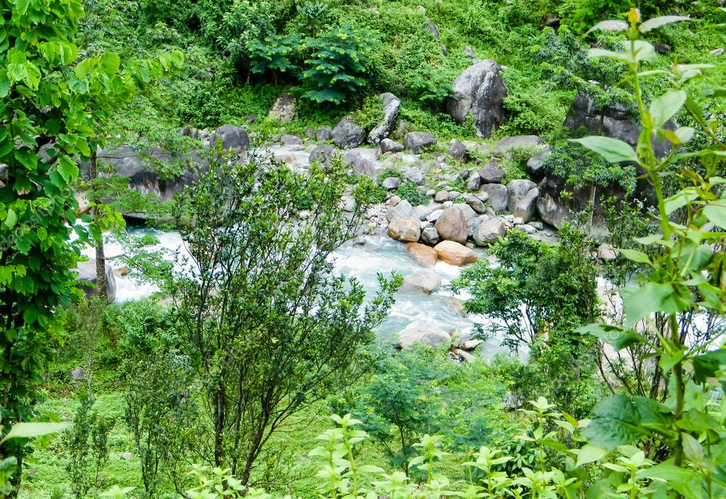 Main tributary of river Teesta, the Rangit river flowing through a dense pristine jungle in northeast of Rangpo Chu at Rangpo settlement just before the Teesta bridge at entrance to East Sikkim.
